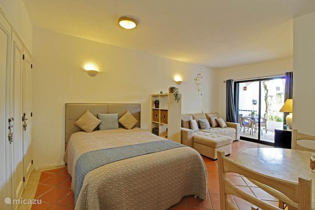 Spacious living/bedroom
