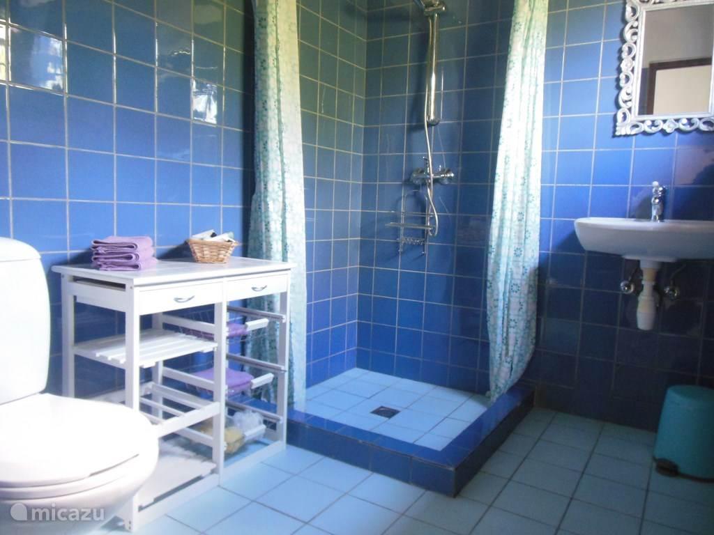 Badkamer met wastafel, toilet en douche.
