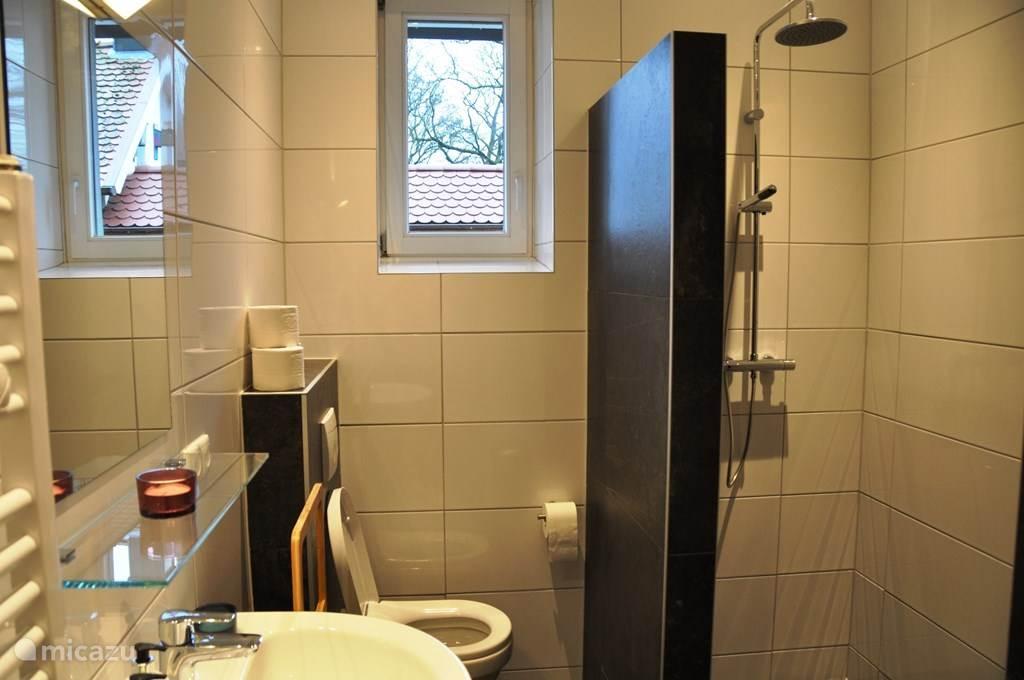 Badkamer op begane grond met douche, toilet en wastafel