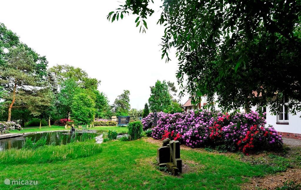 Tuin van landhuis Wielen met vijver en trampoline en speelhuisje