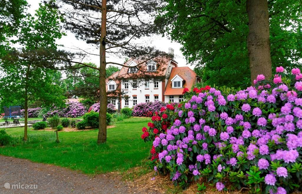 Vakantiehuis Duitsland, Nedersaksen, Uelsen vakantiehuis Landhuis Wielen 2