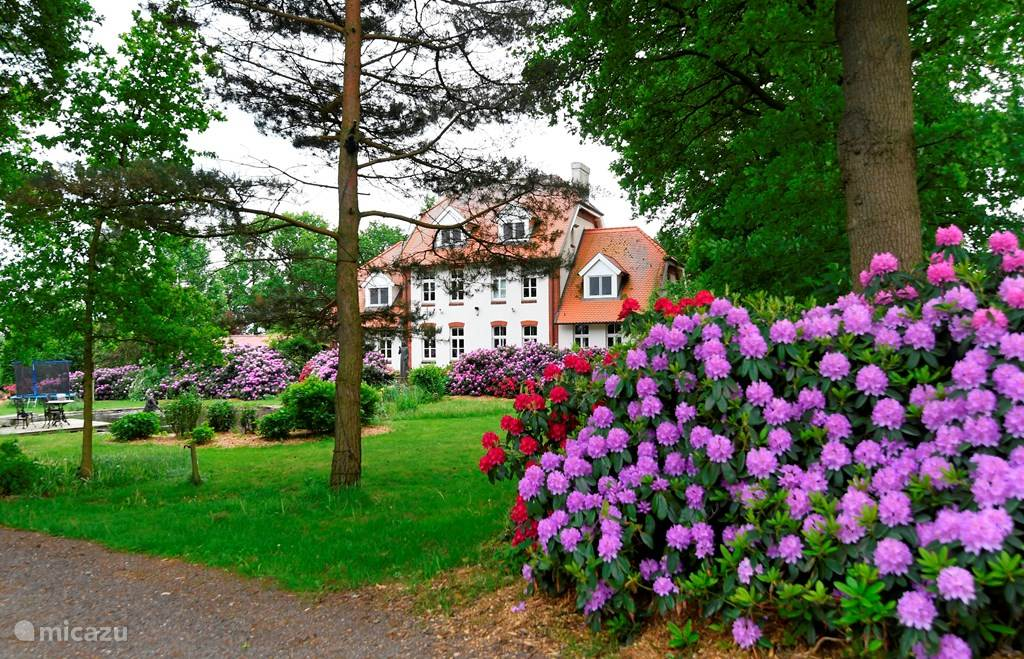 Vakantiehuis Duitsland, Nedersaksen, Uelsen Vakantiehuis Landhuis Wielen 3