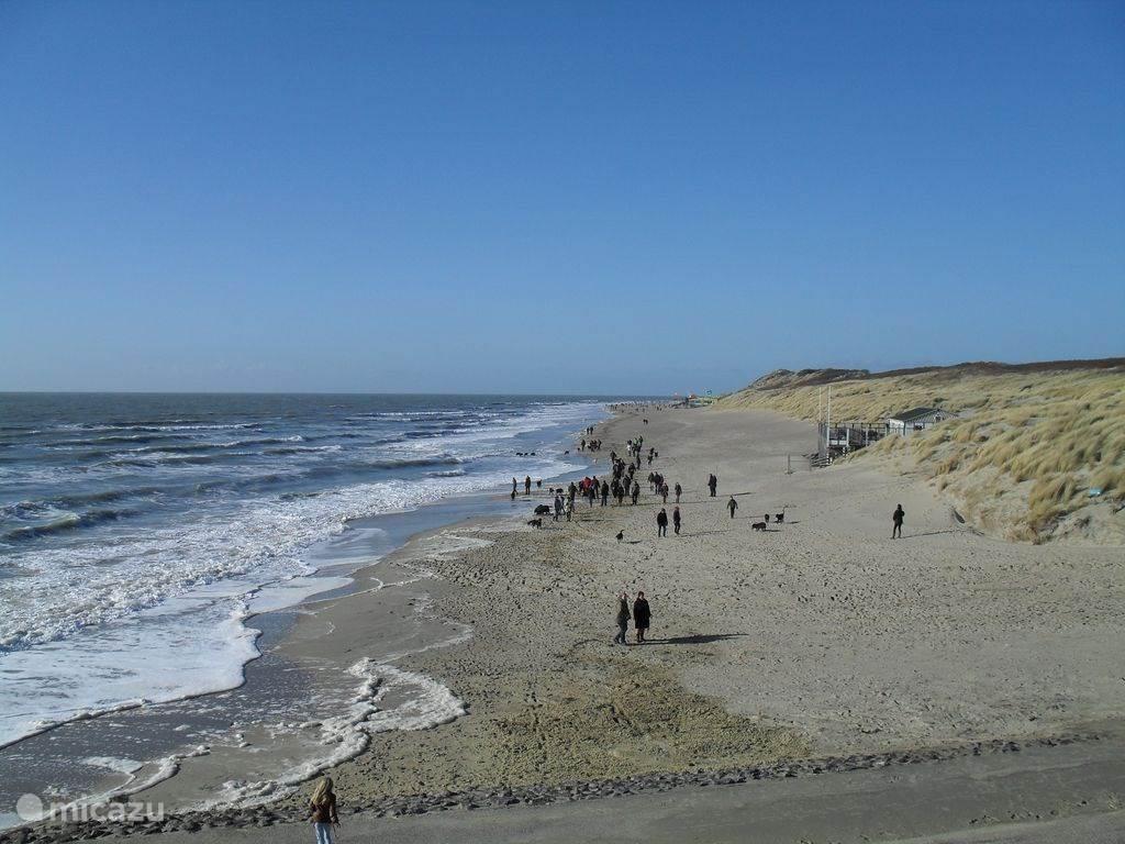 Strand bij de punt