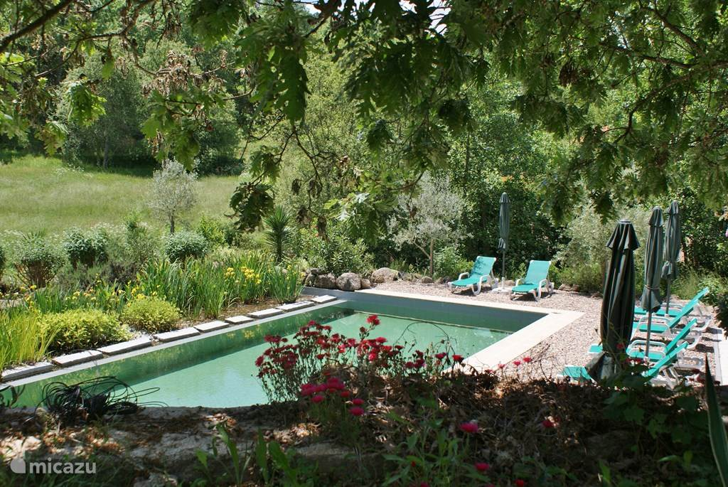 Onze trots: een groot ecologisch zwembad zonder chloor, zout of andere chemicaliën.