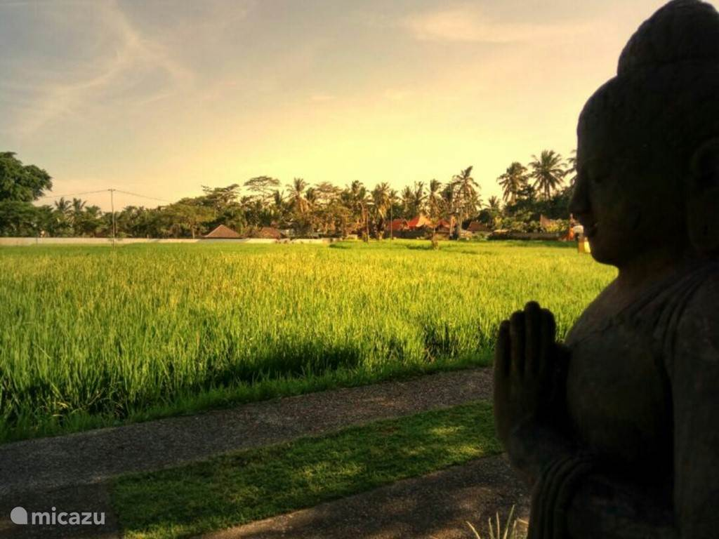 Vakantiehuis Indonesië, Bali, Ubud Villa 8 slaapkamer villa net buiten Ubud