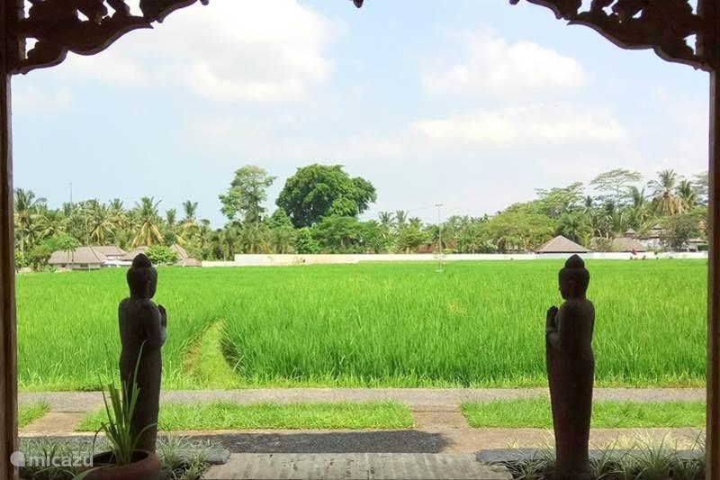 vakantiehuis indonesi bali ubud villa 8 slaapkamer villa net buiten ubud