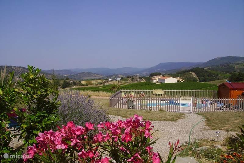 Vakantiehuis Frankrijk, Aude, Tourreilles Gîte / Cottage Gîte*** 'Entre les Vignes'