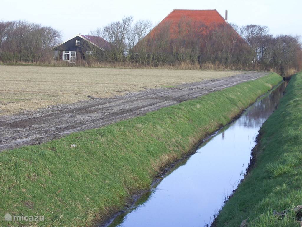 Vakantiehuis Nederland, Noord-Holland, Callantsoog Gîte / Cottage Walvis