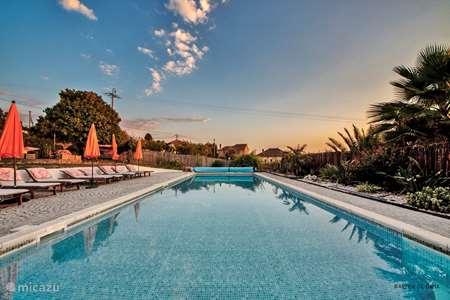 Vakantiehuis Portugal, Beiras, Tabua boerderij Quinta d'Alegria