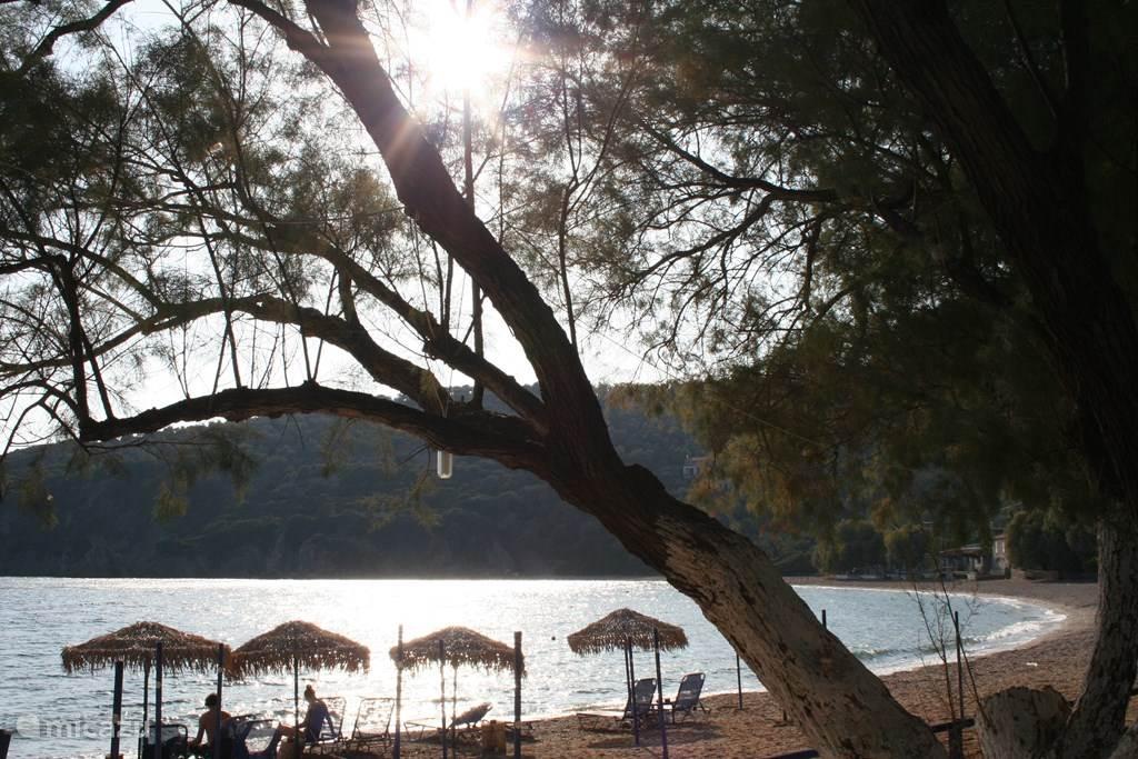 Tarti Beach