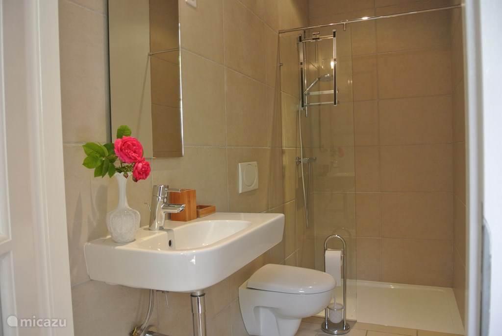 Lux badkamer met inloopdouche.