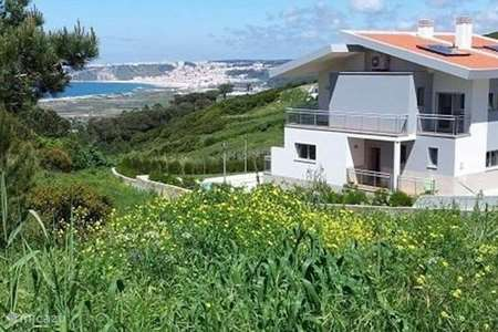 Vacation rental Portugal, Prata Coast, Nazaré bed & breakfast Os Barcos