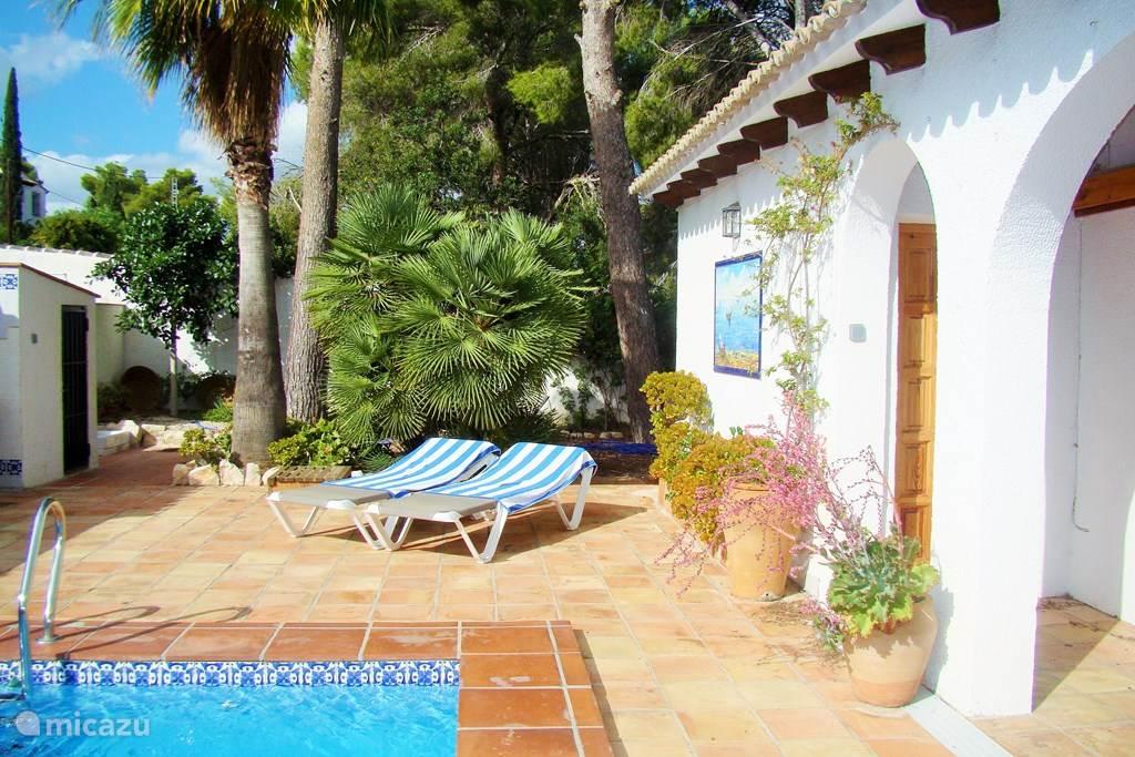 Tuin en zwembad met volledige privacy