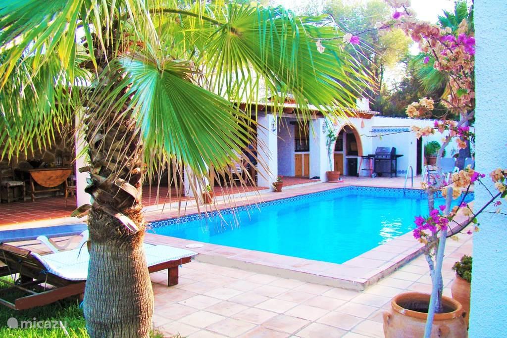 Het zwembad vanuit de tuin gezien