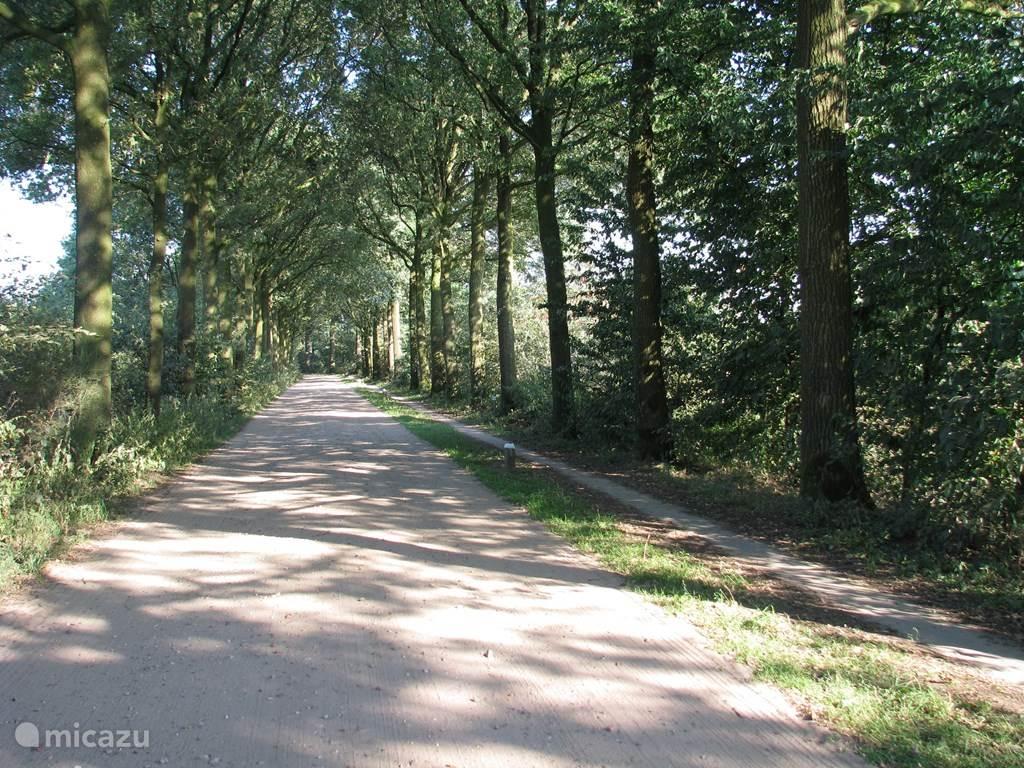 Prachtige omgeving om te wandelen en te fietsen