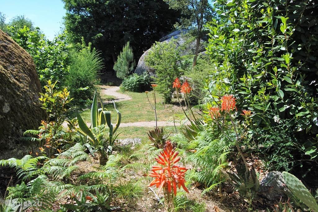 Onze mooie tuin