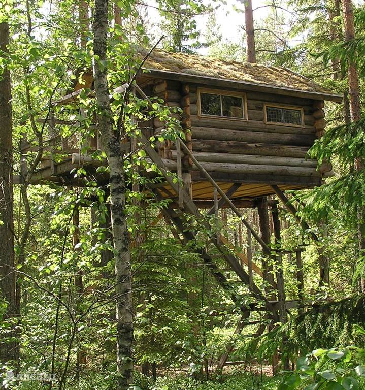 Vakantiehuis Zweden – blokhut / lodge Boomhut Långtjärn