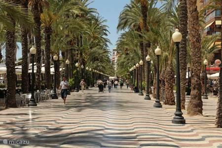 Boulevard Alicante