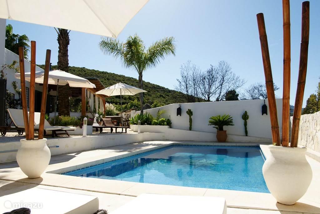Ons zwembad, waar je heerlijk kunt ontspannen op de diverse luxe ligbedden, onder het genot van een muziekje en een koud drankje van onze bar.