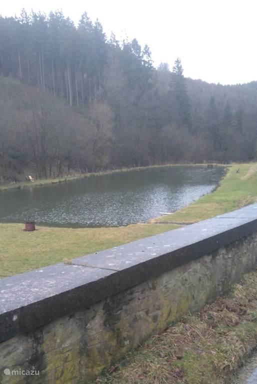 Ferienwohnung Belgien, Ardennen, Gouvy Gîte / Hütte La Buse en Bois