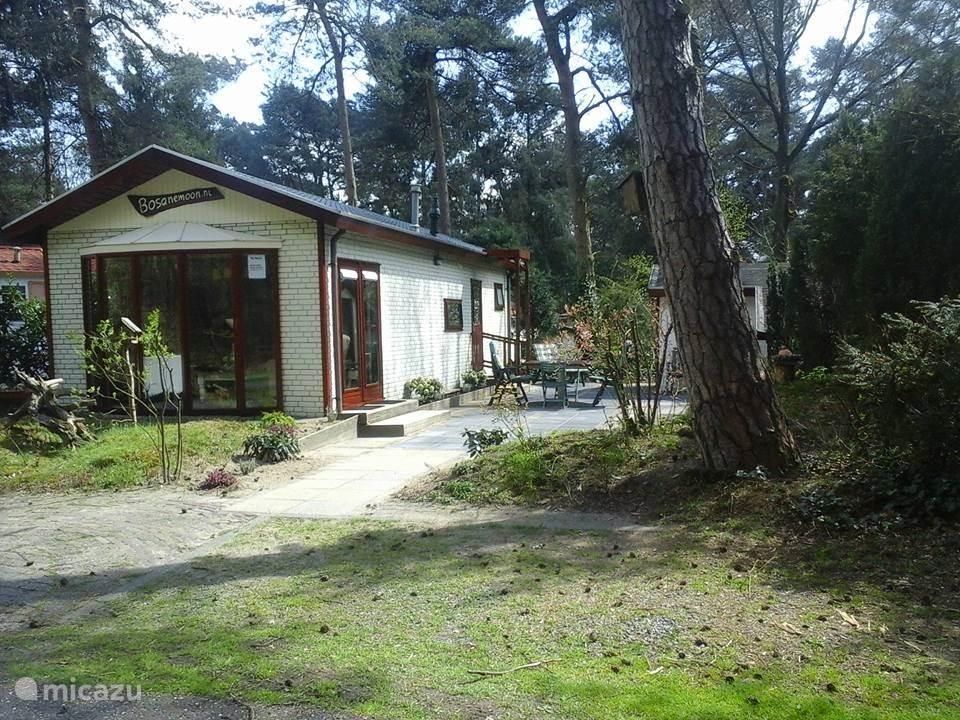 Vakantiehuis Nederland, Drenthe, Dieverbrug chalet Chalet De Bosanemoon