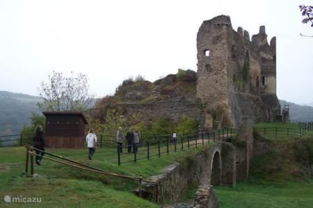 Chateau Roger