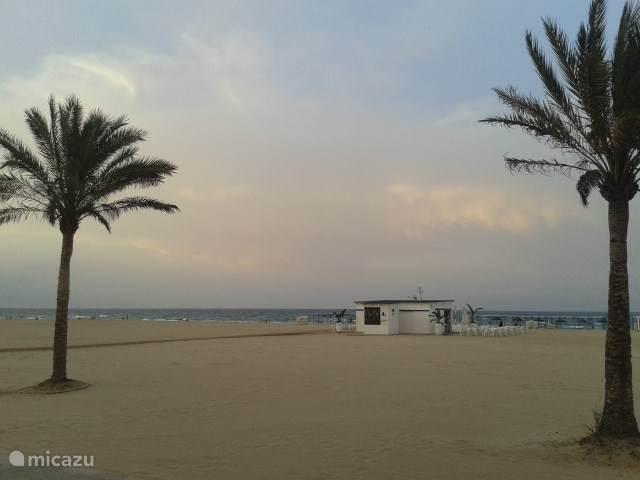 Het strand is enorm en direct in lijn met het appartement bevindt zich op het strand een strandtentje met WC. Daar zijn er veel meer van verdeeld over het hele strand. Ook heerlijk om 's avonds met je voeten in het zand een drankje te drinken na een strandwandeling.