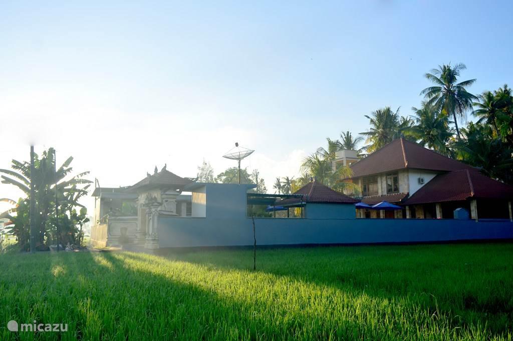 Villa Romy  U0026 Bungalows 3 In Lovina  Bali Huren