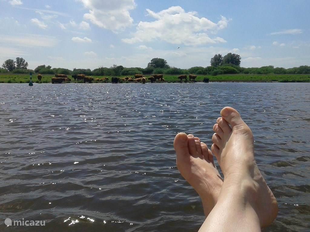 De achtertuin grenst aan het water rivier de Lauwers. Er is een mogelijk om een bootje te huren deze ligt dan klaar. Vissen of lekker zwemmen behoort ook tot de mogelijkheden.