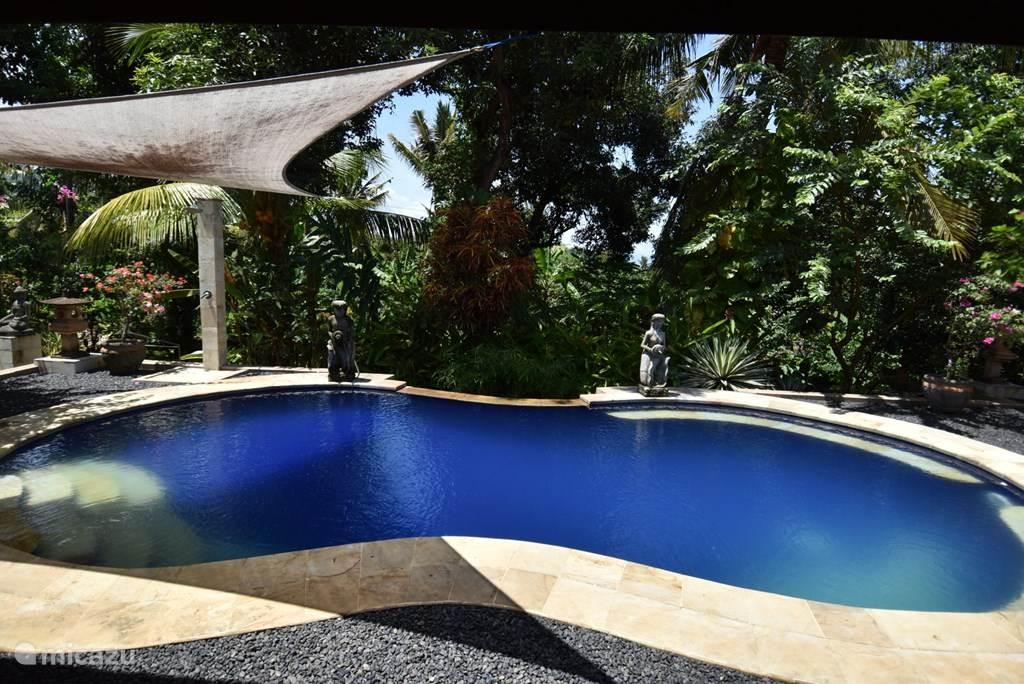 het tropische zwembad direct naast de veranda