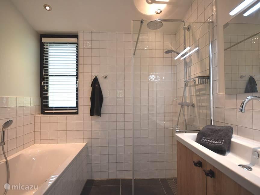 2e badkamer met regendouche, ligbad en wastafel.