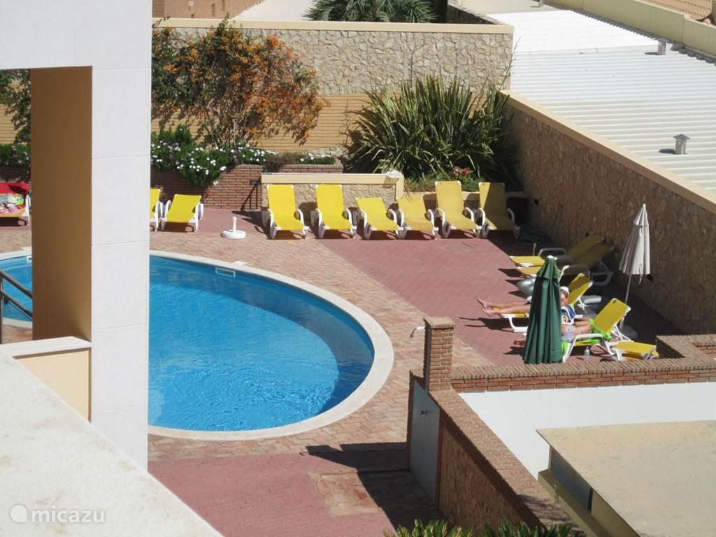 Zwembad met ligstoelen