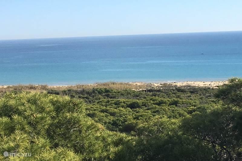 Vakantiehuis Spanje, Costa Blanca, Guardamar del Segura Appartement Oasis Beach X - El Raso 59