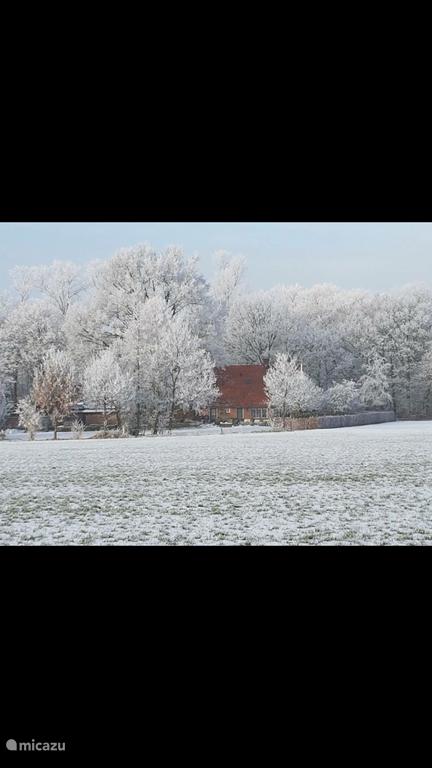 Een winterplaatje van het huis vanuit t weiland genomen