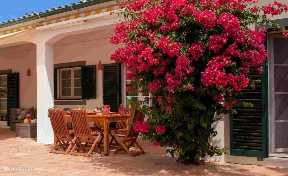 Hugo heeft een overdekte veranda, vanaf waar je 's morgens prachtig de zon kunt zien opkomen. In de middag biedt de veranda schaduw.