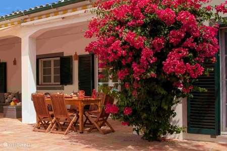 Vakantiehuis Portugal, Algarve, Moncarapacho - villa Villa Hugo