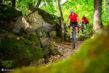 Mountainbiken en wielrennen