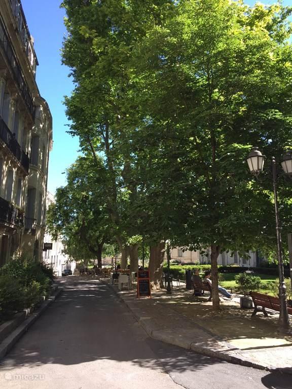 In de omgeving: strand en mooie steden zoals Montpellier