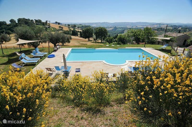 Zwembad van Borgo Belfiore in de olijfgaard