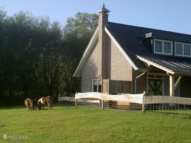 Jacuzzihuisje staat ongekend mooi gelegen , met wisselend uitzicht over weilanden en bossage
