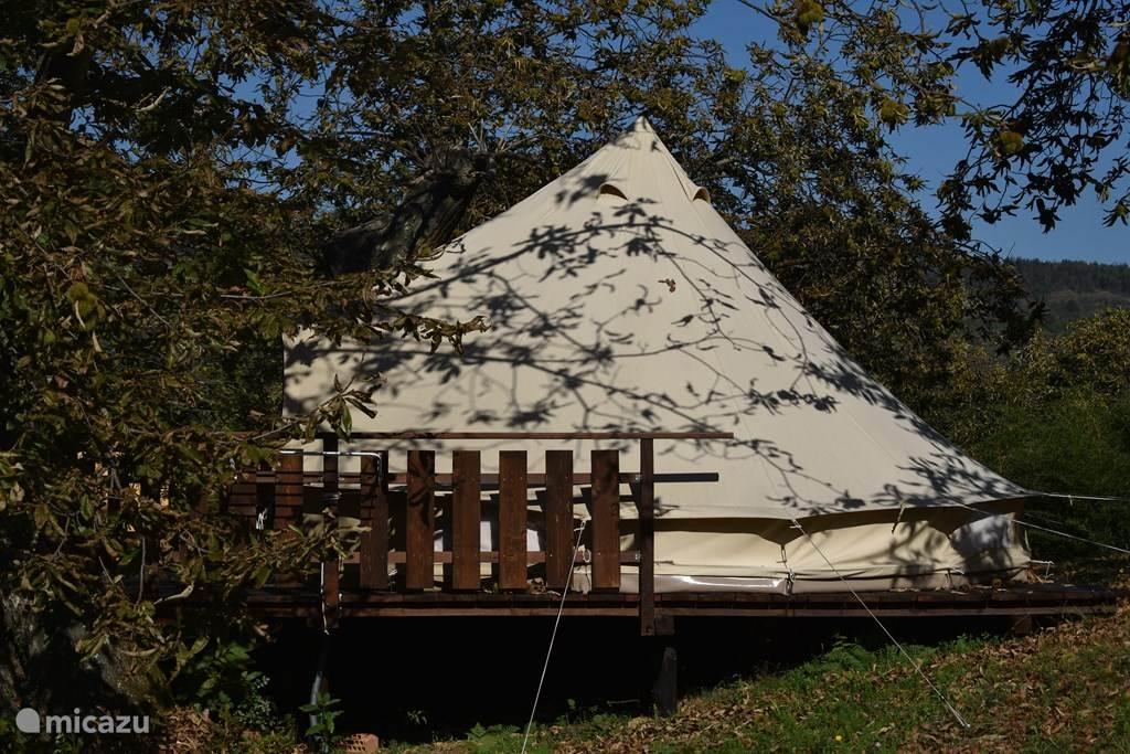 Vakantiehuis Italië, Toscane, Santa Fiora Glamping / Safaritent / Yurt Podere di Maggio - Glamping tent 2