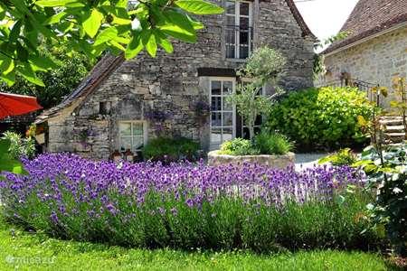 Vakantiehuis Frankrijk, Lot, Cajarc gîte / cottage Le Chant du Verdier - L'Olivier
