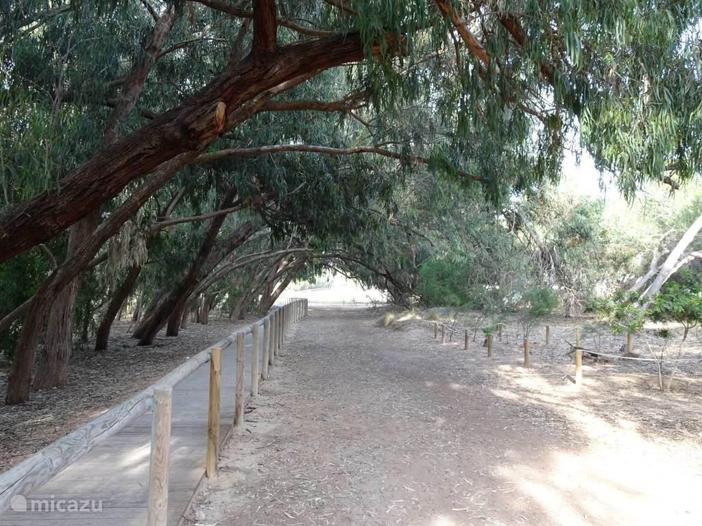 Parc Natural
