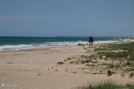 strand El Palmar
