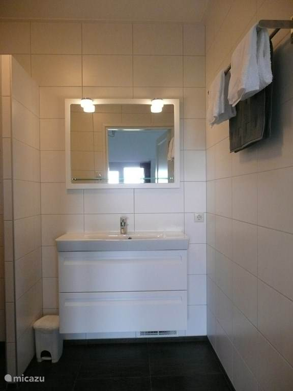 de badkamer met wastafel en inloopdouche