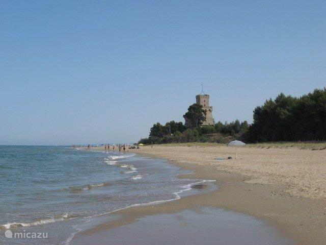 Strand bij Pineto