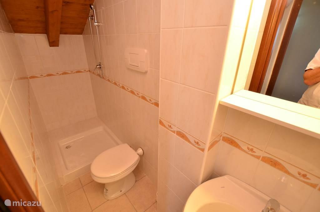 Badkamer boven.