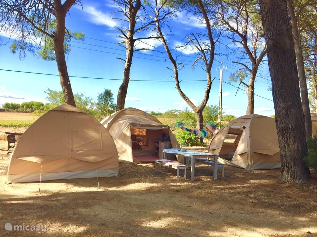Vakantiehuis Frankrijk, Languedoc-Roussillon, Meze Gîte / Cottage Karsten Tent Terret