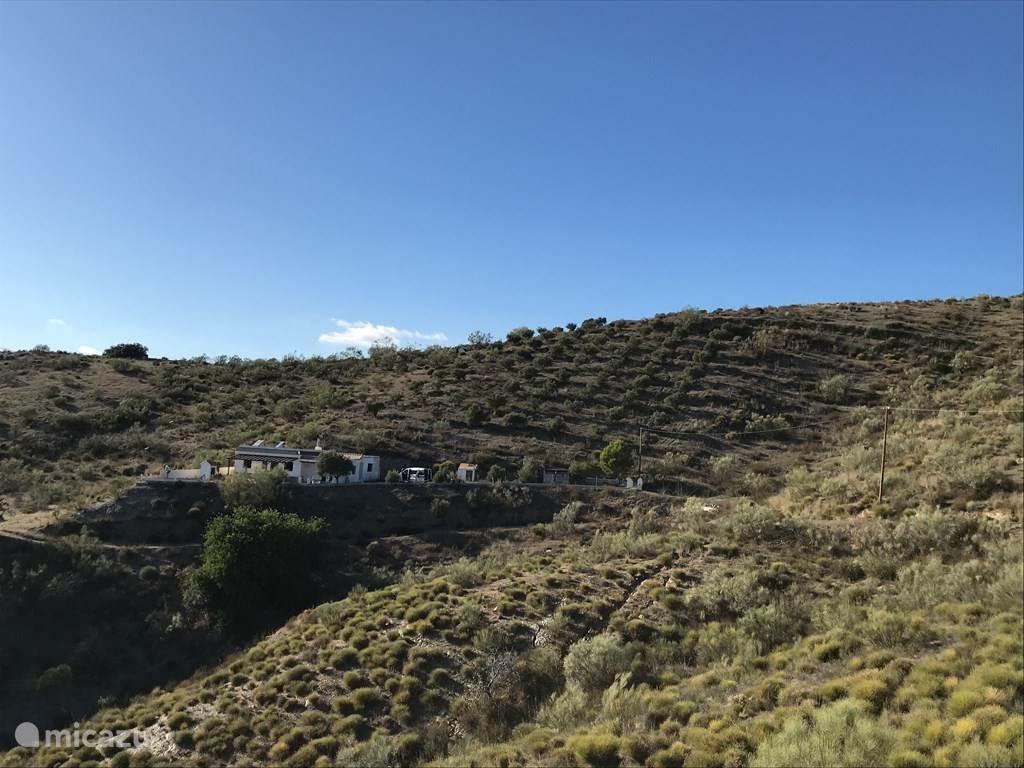 Cortijo Los Olivos met eigen olijfgaard en veel privacy
