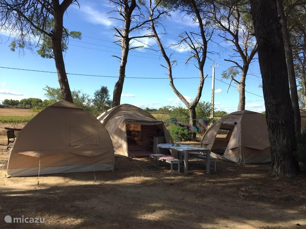 Vakantiehuis Frankrijk, Languedoc-Roussillon, Meze gîte / cottage Karsten Tent Alicante